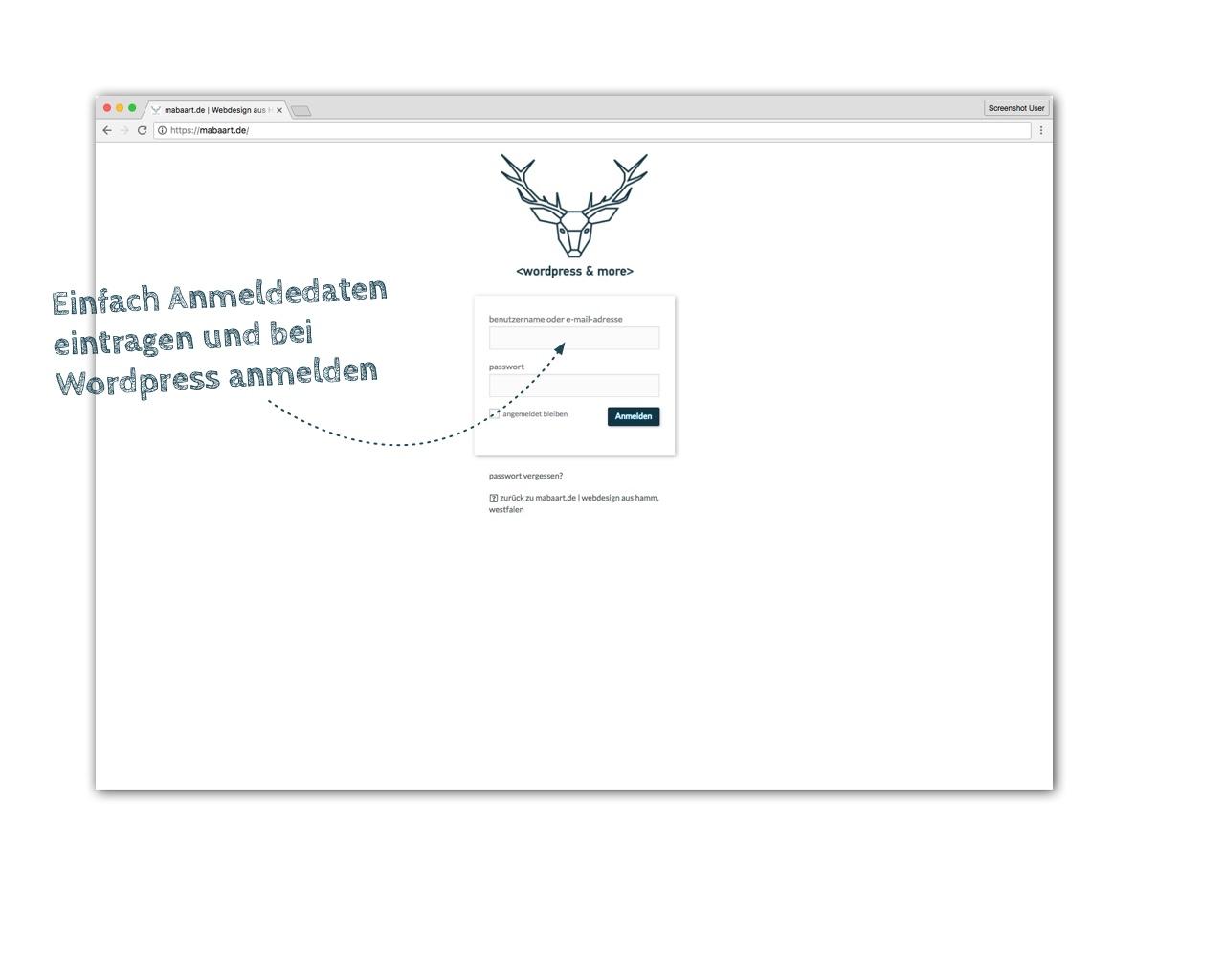 Bildschirmfoto der WordPress-Anmeldemaske