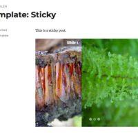 Responsive Slider Plugin Bildschirmfoto Übergang