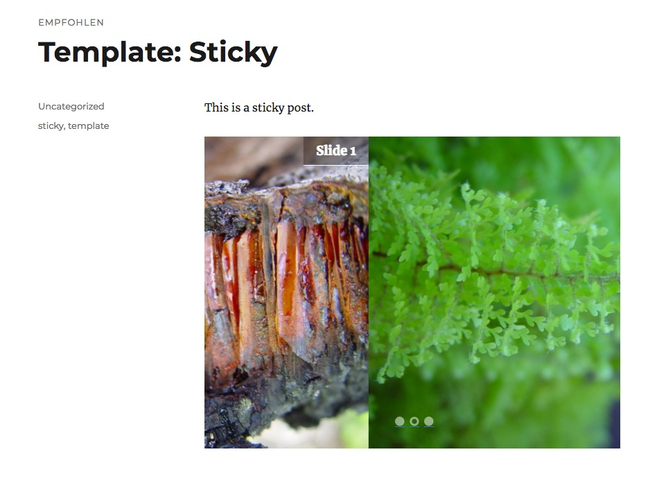 Responsive Slider plugin screenshot transition of slides